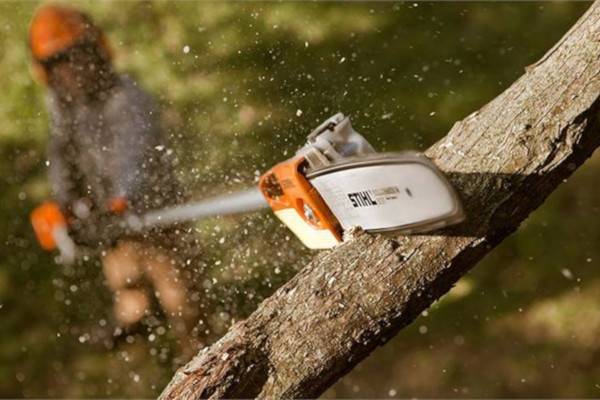 STIHL | Pole Pruners | Homeowner Pole Pruners for sale at Bingham Equipment Company, Arizona