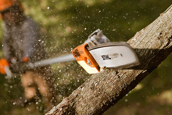STIHL | Pole Pruners | Professional Pole Pruners for sale at Bingham Equipment Company, Arizona